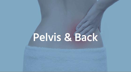 pelvis low back
