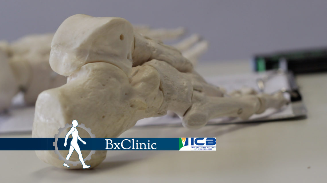 BxClinic Training Course